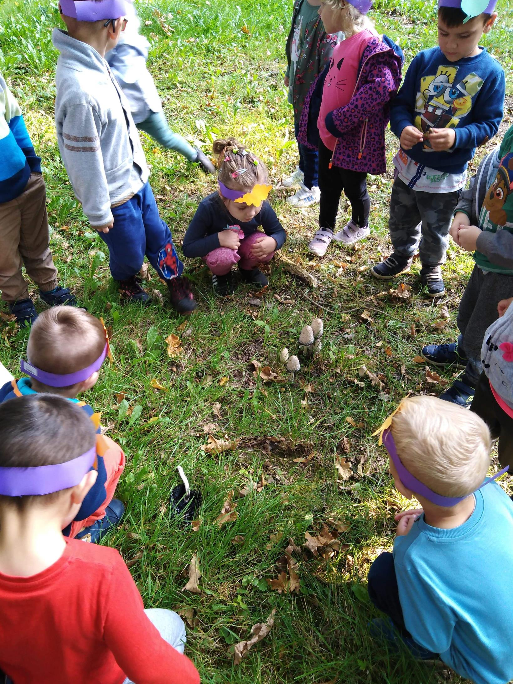 Przedszkolaki w czasie poszukiwań oznak jesieni