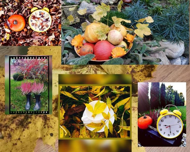 Zdjęcia przedstawiają kompozycje z zastosowaniem przedmiotów codziennego użytku na tle jesiennej przyrody.