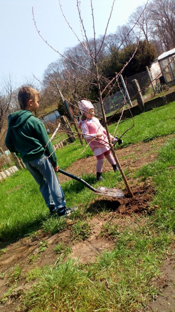 Uczeń klasy drugiej trzeciej pracy w ogrodzie