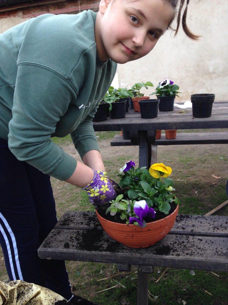Uczennica klasy trzeciej podczas sadzenia roślin
