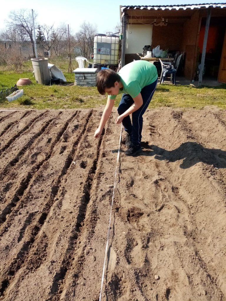 Uczeń klasy trzeciej podczas pracy w ogrodzie