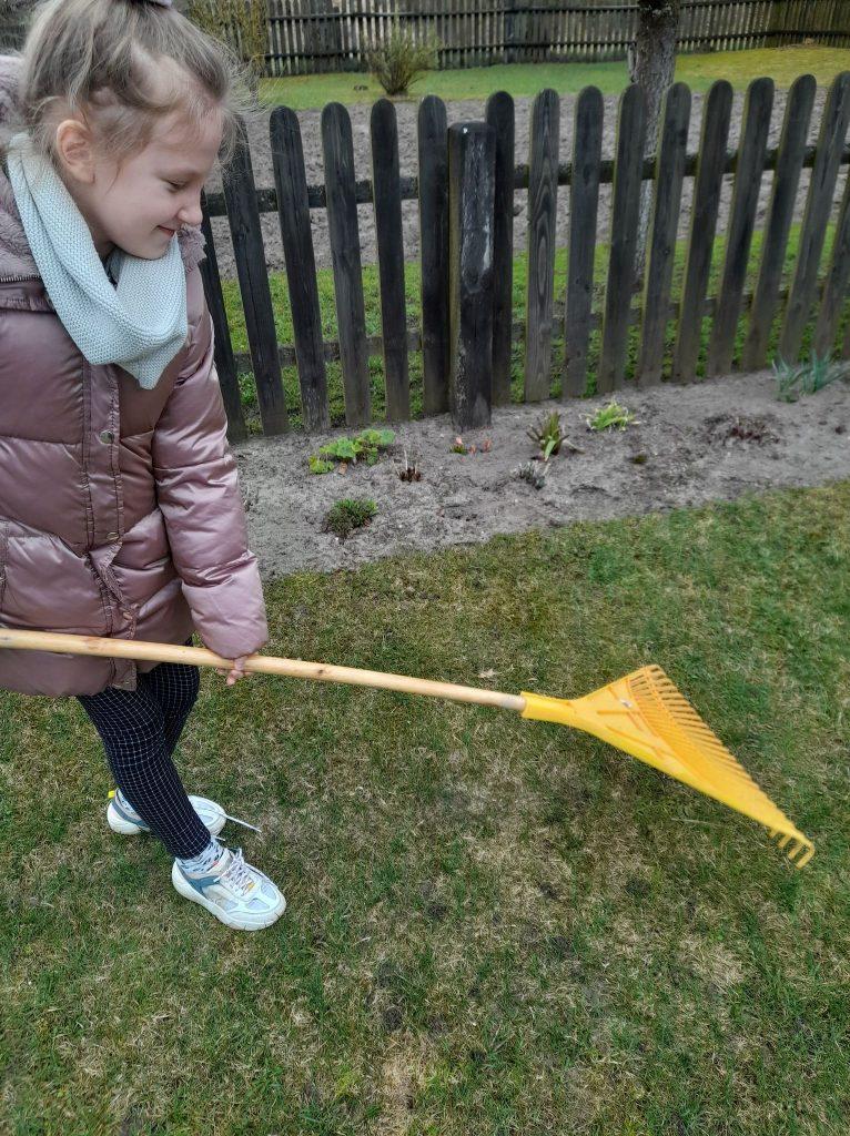 Uczennica klasy drugiej pielęgnuje trawnik