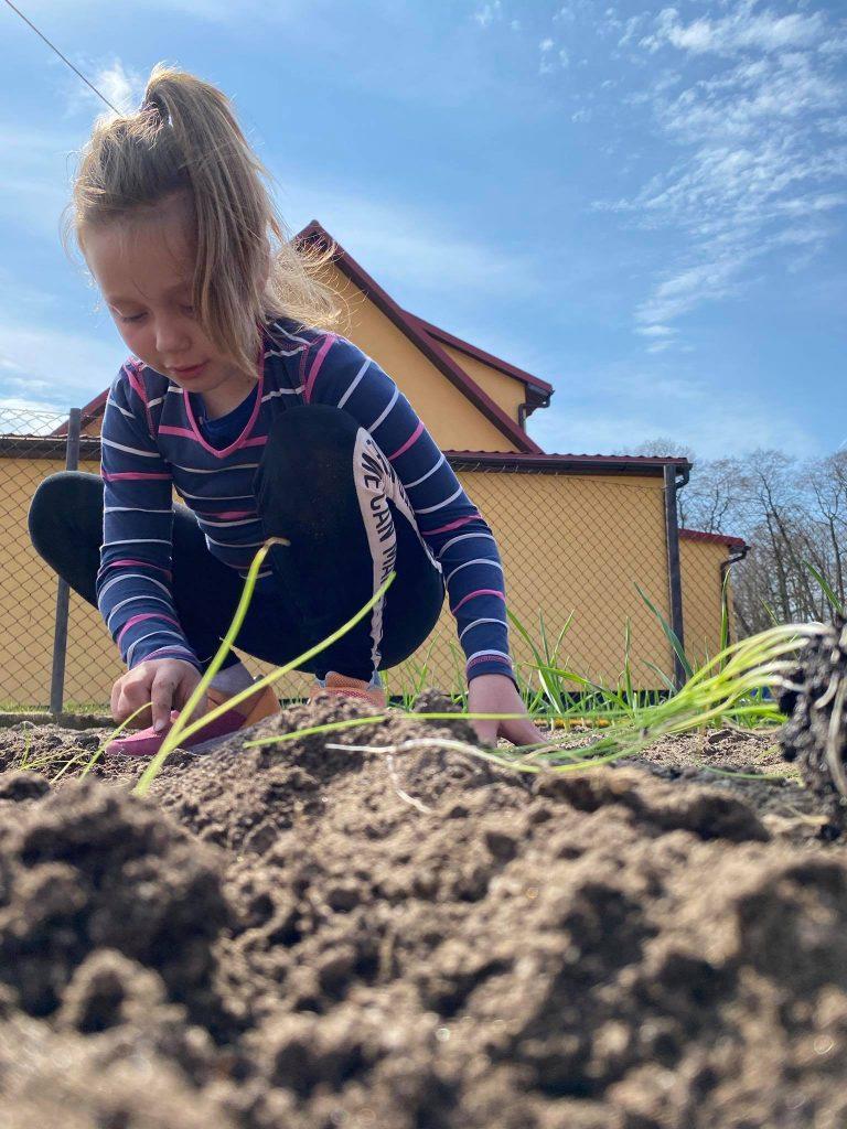 Uczennica klasy drugiej podczas pracy w ogrodzie